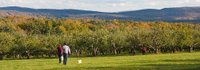 Hilltop Orchards
