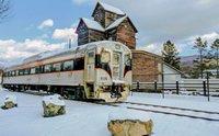 Berkshire Scenic Railway Tinseliner-1.jpg