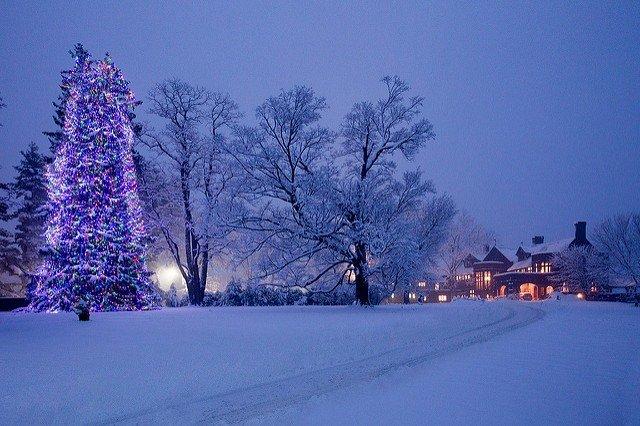 Christmas at Blantyre