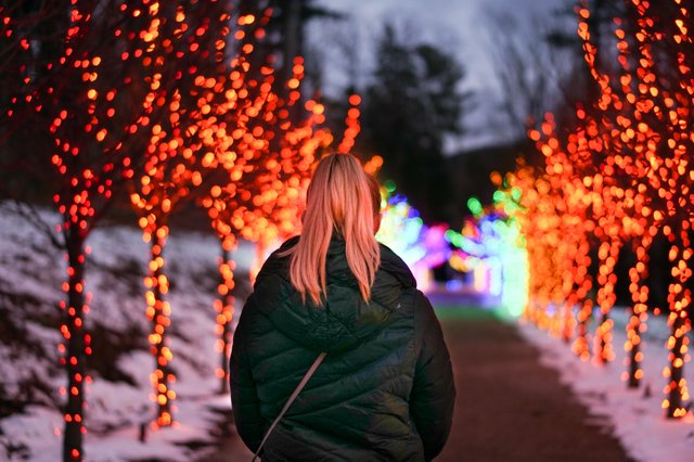 Winterlights at Naumkeag-1.jpg