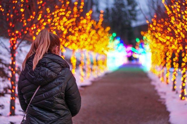 Winterlights at Naumkeag-2.jpg