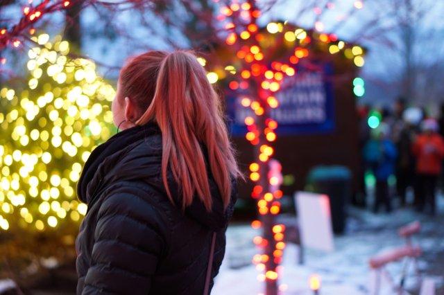Winterlights at Naumkeag-6.jpg