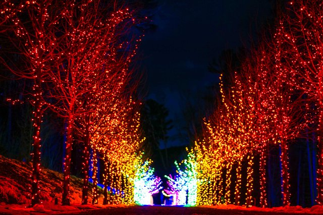 Winterlights at Naumkeag-11.jpg