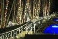 Winterlights at Naumkeag-12.jpg