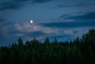 summer night.jpg