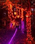 naumkeag  pumpkin trail.jpg