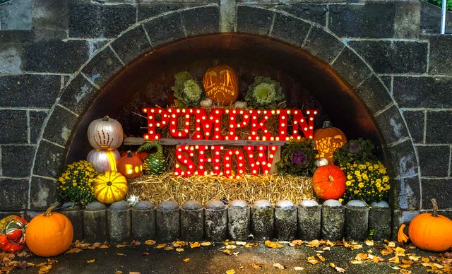 naumkeag  pumpkin show.jpg