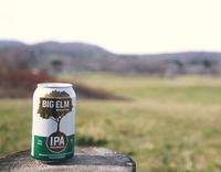 Big Elm Brewery fb.png