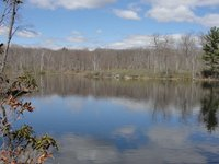 Beartown-State-Forest-by-Diane-Cote Housatonic Heritage .jpg