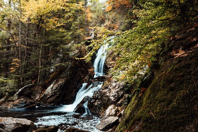 Campbell Falls-1.jpg