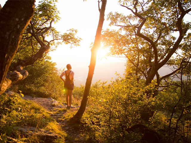 Best Hiking Trails in the Berkshires