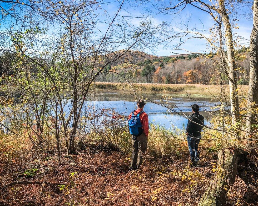 Berkshires scenic hikes