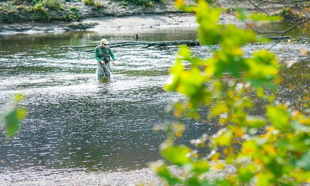 Berkshires Fly Fishing