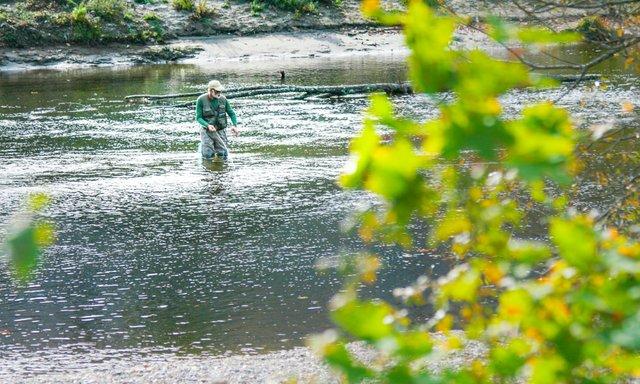 Berkshires Fly Fishing