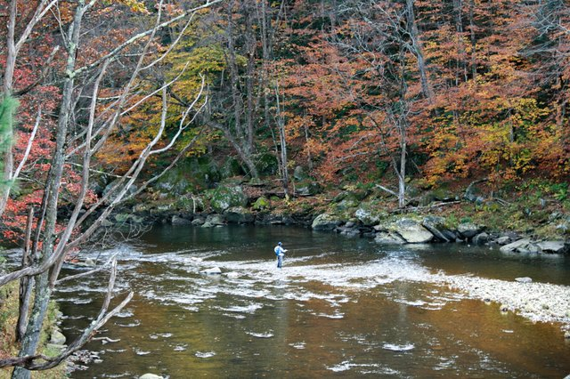 Fly Fishing in the Berkshires