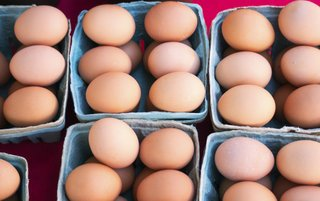 Organic eggs for sale at berkshires farmers market