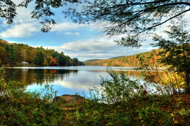 Berkshires lake foliage view